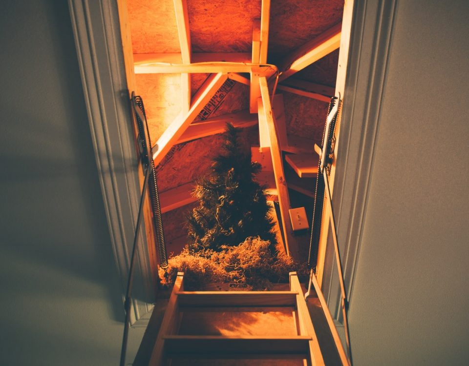 attic-renovation