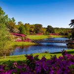 best places to retire near charlotte nc